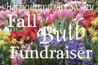 HAS Bulb fundraiser